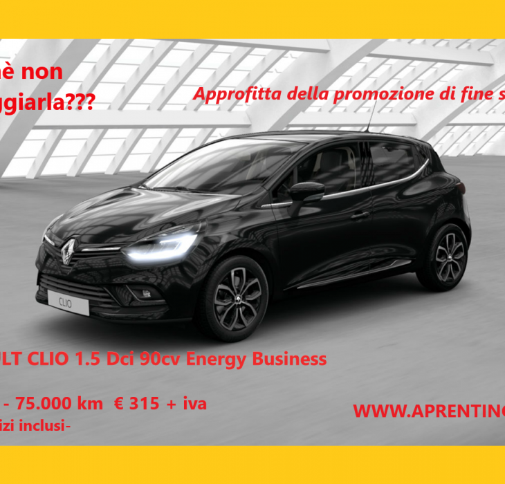 RENAULT CLIO 1.5 Dci   48 MESI -75.000 KM  € 315
