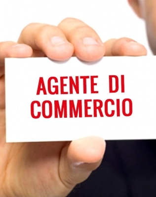 Agenti di Commercio: il noleggio a lungo termine è la vostra soluzione!
